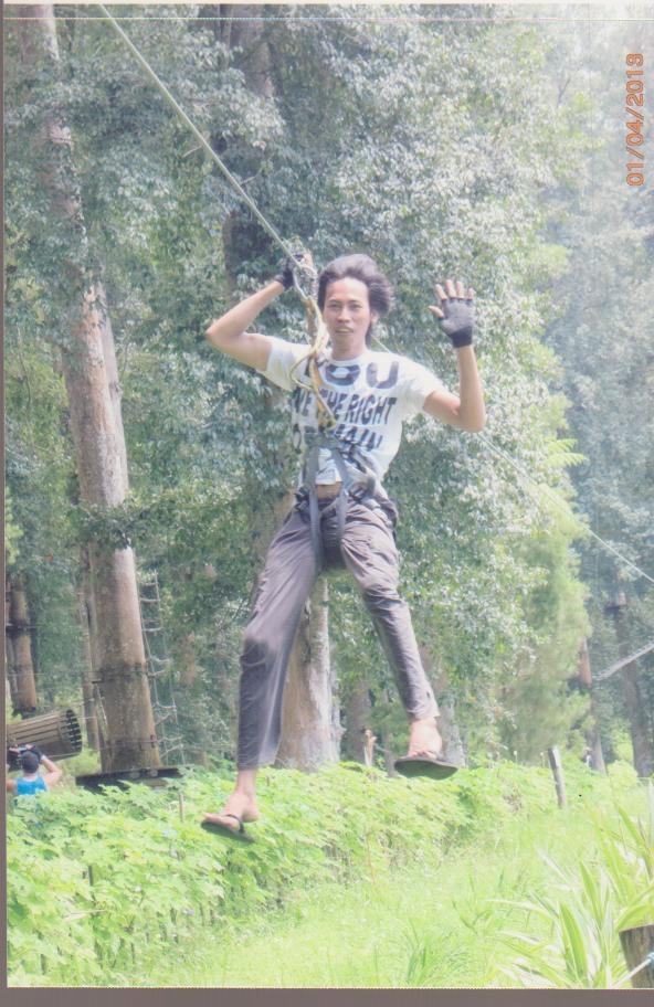 Bedor_bali_treetops